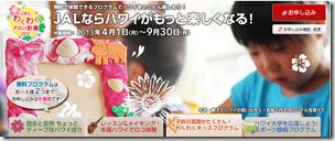 b20130501a_JAL04