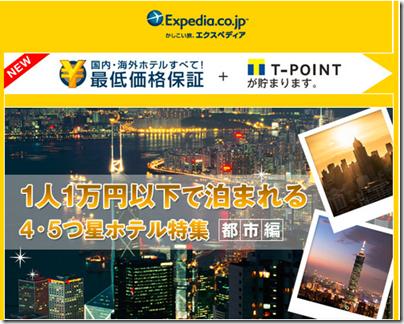 b20130601c_expedia01