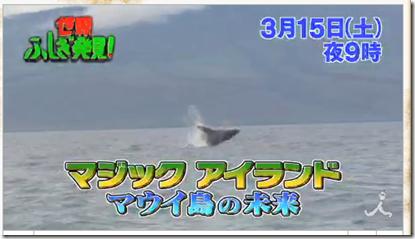 20140313b_tabi